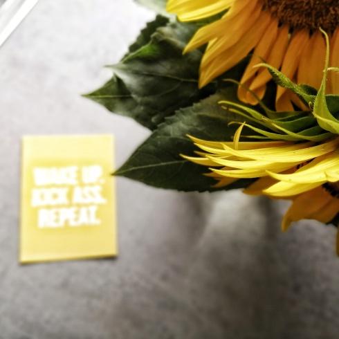 """Ein Close-Up von zwei Sonnenblumen von oben, im Hintergrund liegt eine gelbe Postkarte auf grauem Untergrund mit der leicht unscharfen Aufschrift: """"Wake up. Kick ass. Repeat."""