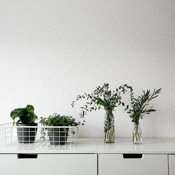 Auf zwei weißen Kommoden steht ein weißer Drahtkorb mit grünen Pflanzen. Daneben zwei mit Wasser und Sträuchern gefüllte Flaschen.