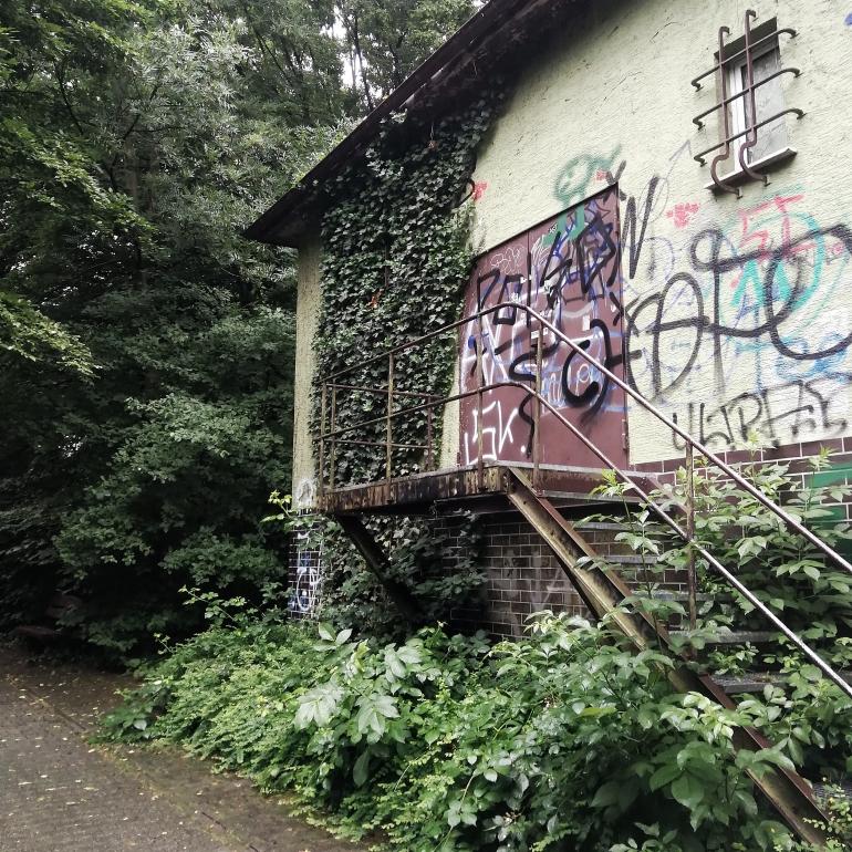 Ich fand ein verlassenes Gebäude am Waldrand, vollgesprayt mit Graffiti und überwachsen mit Efeu. Unter und zwischen den rostigen Metalltreppen wachsen viele Pflanzen.